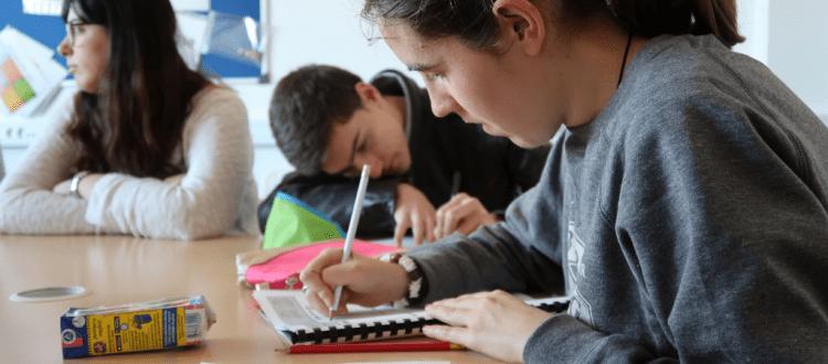 Ayudas estudiantes con discapacidad intelectual